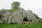 Batu Karang Besar Sebelum Memasuki Fatumnasi